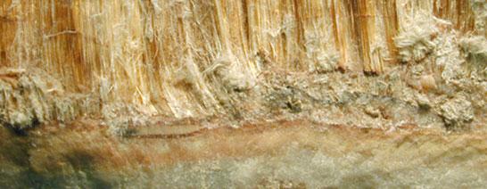 TAK Umweltservice - Industriesanierung - Asbestsanierung